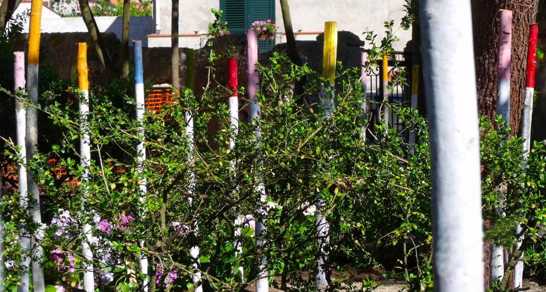 Un giardino una comunit un progetto di michelangelo for Progetto di un giardino