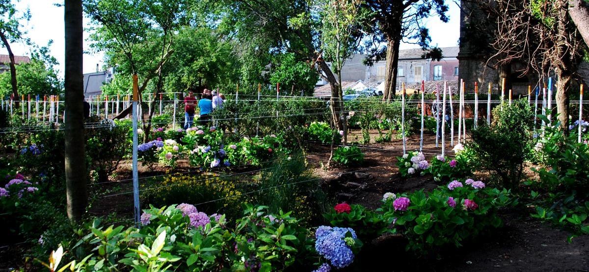 Un giardino una comunit un progetto di michelangelo - Progetto di un giardino ...