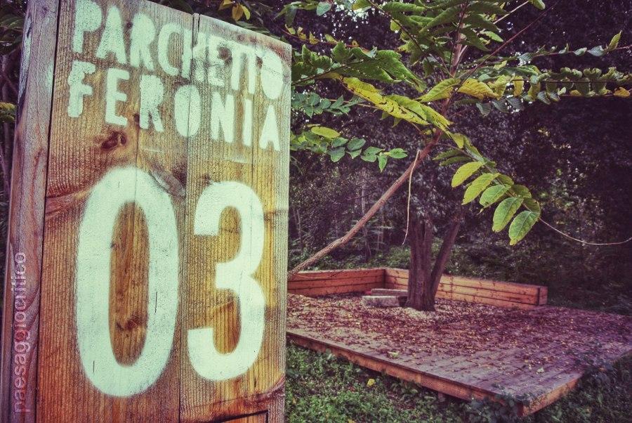 Parchetto Feronia - 28 ottobre 2013 (9)